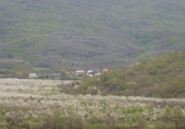 Продается участок 2,1 га в с. Богатырь, Бахчисарайский р-н, Крым
