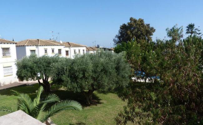 San Miguel de Salinas22