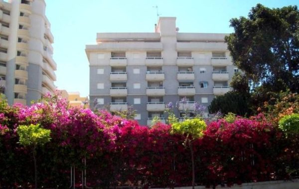 Продаются апартаменты 58 кв.м в районе Новой Торревьехи, Испания