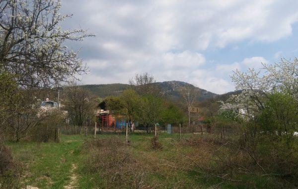 Продажа участка 6.3 соток в СТ Нива, село Орлиное