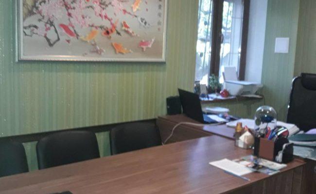 tolstogo-ofis-8