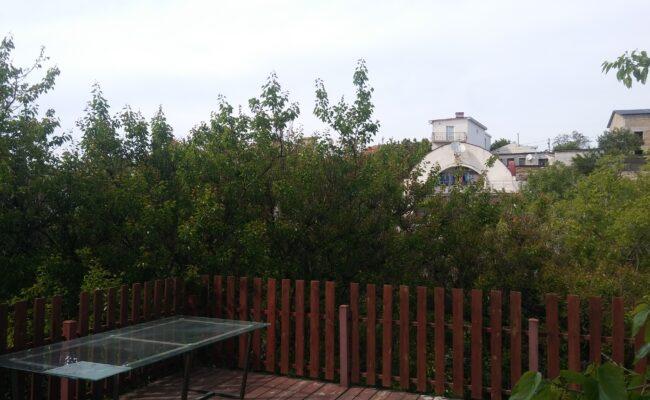 ruchevaya-dom-3
