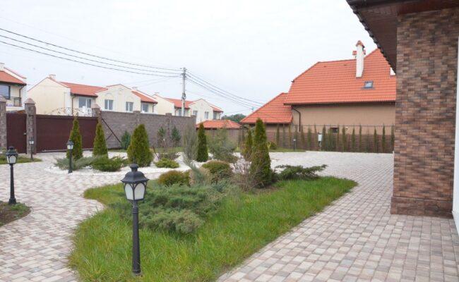 irisovaya-293-5
