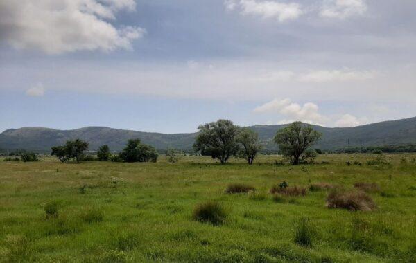 Продается участок 1,4 га, с. Орлиное в Байдарской долине