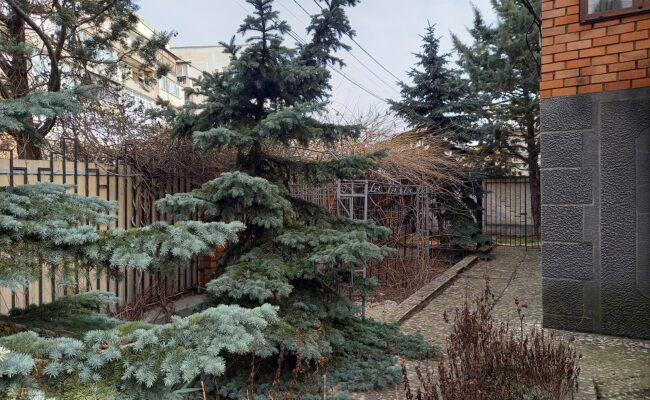 lubimovka-14